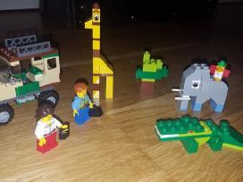 Lego safari 4+, lego duplo - nuotraukos Nr. 9