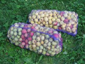 Superku obuolius Prienai Kaišiadorys Žiežmariai