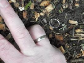 Pamesto žiedo paieška metalo detektoriumi