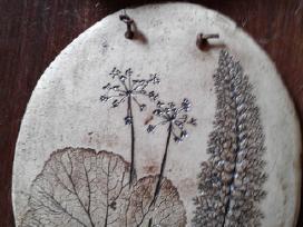Botaniniai ir litografijos paveikslėliai