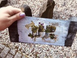 Vazonai gėlėms - nuotraukos Nr. 3