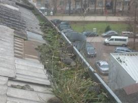 Lietvamzdžių ir stogų valymas