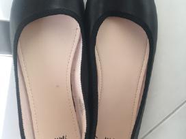 Bateliai, vandens batai - nuotraukos Nr. 3