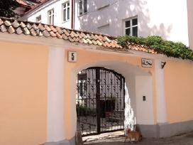 Prabangūs butai, jacuzzi , šalia prezidentūros. - nuotraukos Nr. 18
