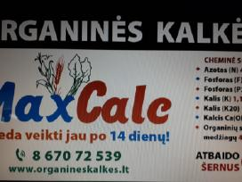 Organines Kalkes Maxcalc St