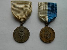 1905 m.svedijos apdovanojimai