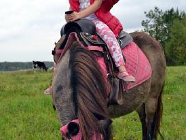 Parduodama poni kumelaite