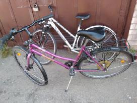 Sidabrinis dviratis su amortikais