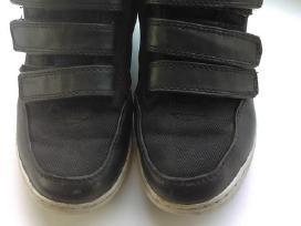 Next batai, 30-31 d., rudeniui pavasariui