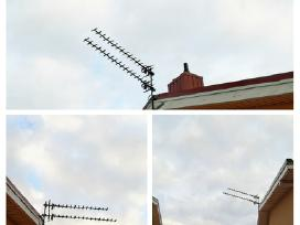 Antenų montavimas, derinimas, remontas, dvb, sat