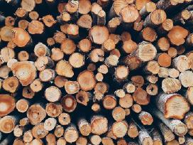 Malkos kalademis skaldytos rasteliais