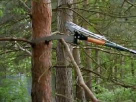 Ilgas teleskopinis Pjūklas medžiui fiscars naujas