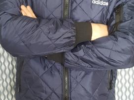 Nauja Vyriska rudenine striuke Adidas