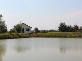 Pobūvių salė, pirtis, 8 km nuo Panevėžio