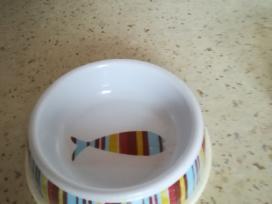 Plastikinis katės dubenėlis