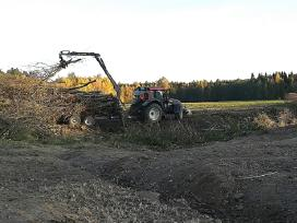 Perkame šakas biokurui nemokamai išpjauname krūmus