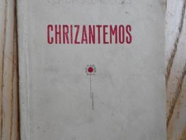 Vladas Baleišis - Chrizantemos. 1929m. Lyrika.