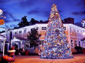 Kalėdinės lauko girliandos - nuotraukos Nr. 2