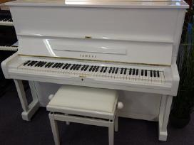 Balti pianinai