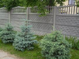 Betoninės tvoros, vartai, šulinio žiedai,suolai. - nuotraukos Nr. 5