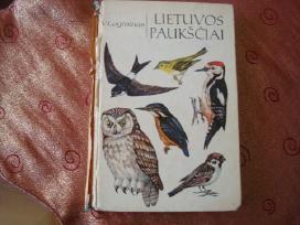 Lietuvos paukščiai
