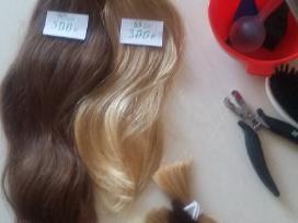 Priauginimas Slavu plauku 300€.vilnius
