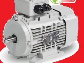 Trifazis elektros variklis naujas