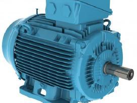Vienfazis elektros variklis Naujas