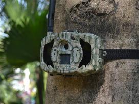 Medžioklinės lauko kameros Email
