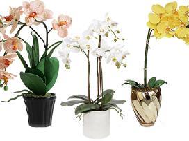 Dirbtinė gėlė orchideja