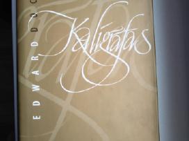 """Edward Docx """"Kaligrafas"""" romanas, 382 psl knyga"""
