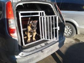 Narvas/narvai šunims/šuniui automobilyje