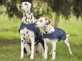 Kokybiški apsiaustai šunims, nuo Xxs iki Xxl - nuotraukos Nr. 4