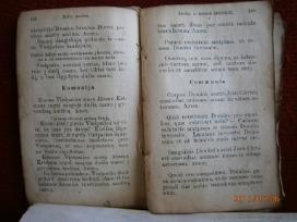 1924 pradzios mokslo metodika ,maldynai