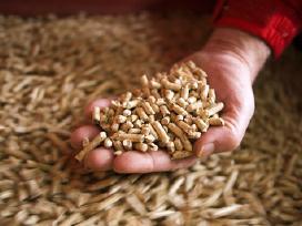 Prekiaujame pjuvenų granulėmis