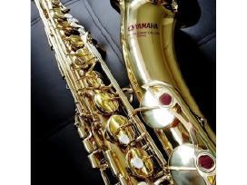 Saksofonai visiems. Platus pasirinkimas