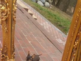 Parduodu antikvarinį veidrodi kaina 1300 eurų