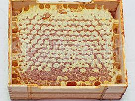 Medus ir kiti bičių produktai - nuotraukos Nr. 2