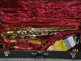 Saksofonai pradedantiems ir profesionalams. pigiai