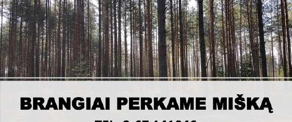 Perkame Mišką Visoje Lietuvoje !