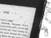 Kindle Paperwhite 4 skaityklė - nuotraukos Nr. 2