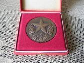 Stalo Medalis – Originalioje Dezuteje.zr. Foto - nuotraukos Nr. 2