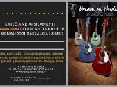 Individualios gitaros pamokos - nuotraukos Nr. 4