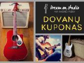 Individualios gitaros pamokos - nuotraukos Nr. 3