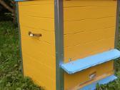 Aviliai bitėms. Tomoaviliai - nuotraukos Nr. 2