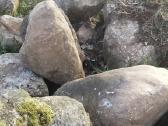 Parduodu akmenis ivairaus didzio - nuotraukos Nr. 6