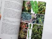 Ultimate Edible Plant Guide - nuotraukos Nr. 2